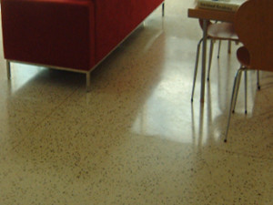 terrazzo-cleaning (34)